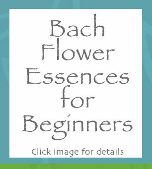 Bach Flower Essences for Beginners